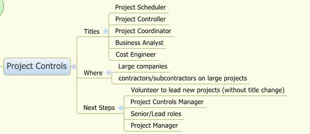 Project Controls Manager Resume Sample