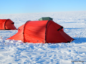 tent IMG_6898