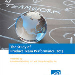 The 2013 Study of Product Team Performance