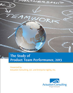 cover: 2013 Study of Product Team Performance