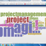 Voice of the Project Management Profession - Hash Tags!